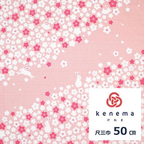 気音間 綿小風呂敷 約50cm 桜うさぎ/M199-83434