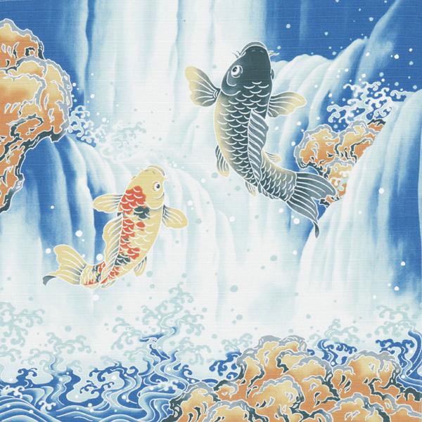 綿小 鯉の滝登り