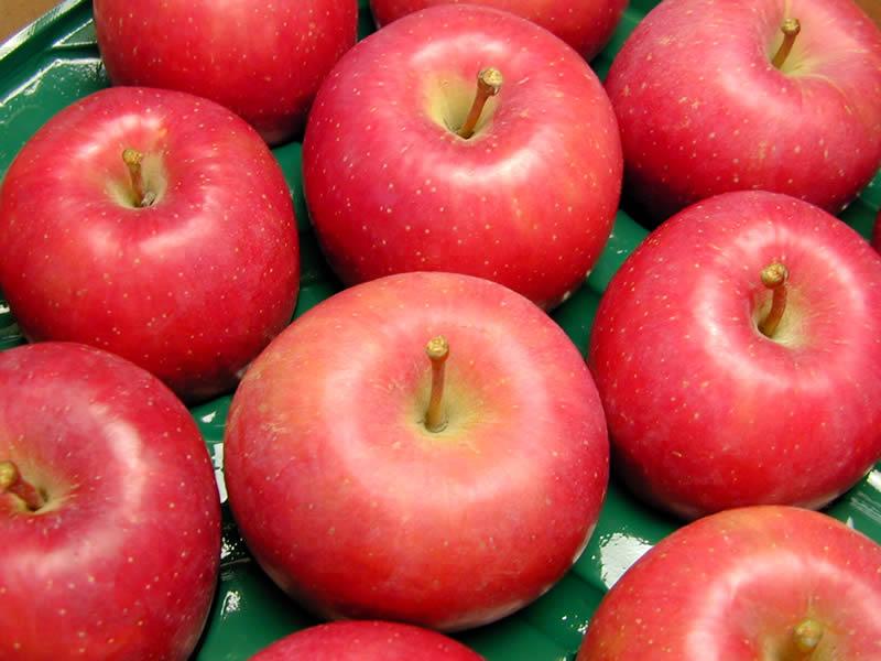 りんご紅将軍