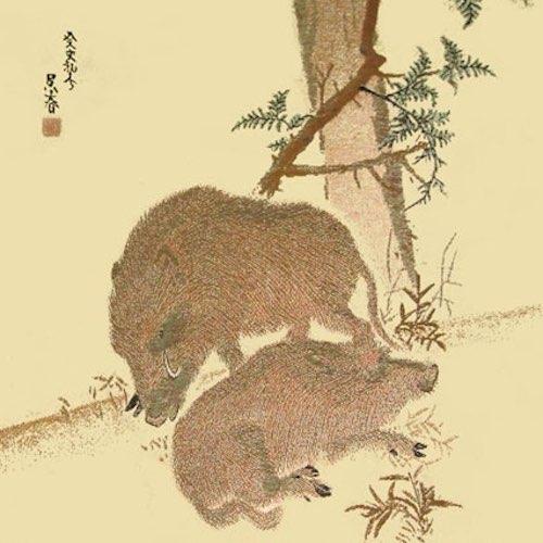 2019年 川島織物セルコン 綾錦織 掛軸カレンダー「呉春猪図」