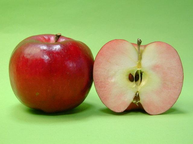 りんご 紅の夢
