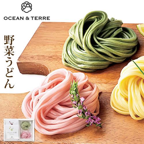 野菜うどんセットAA059