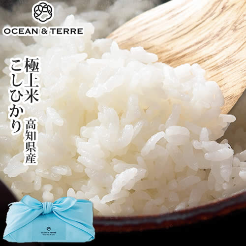 TSUTSUMI極上米高知県産こしひかりA136
