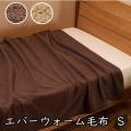 寝具 毛布 発熱毛布 エバーウォーム シングル 約140×200cm 冬 マイクロファイバー