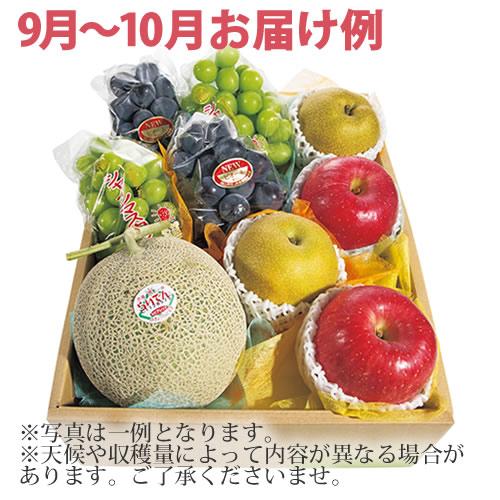 【送料無料】Gコース・おまかせ旬のフルーツボックス(99029-07)