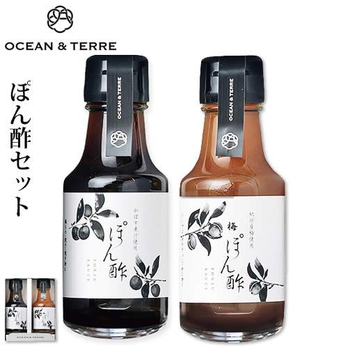ぽん酢セットB(A291)
