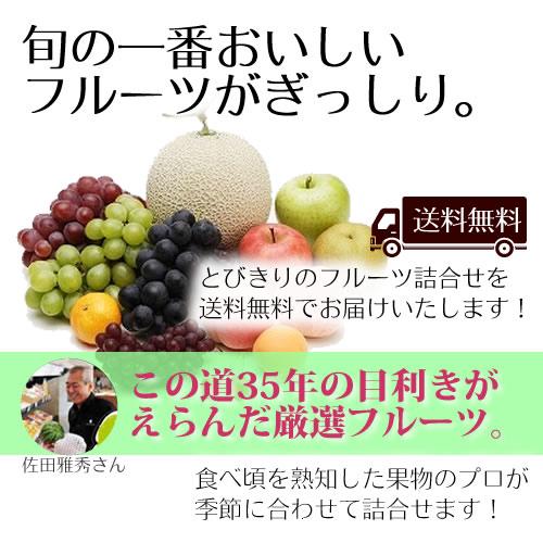 フルーツボックス共通紹介文