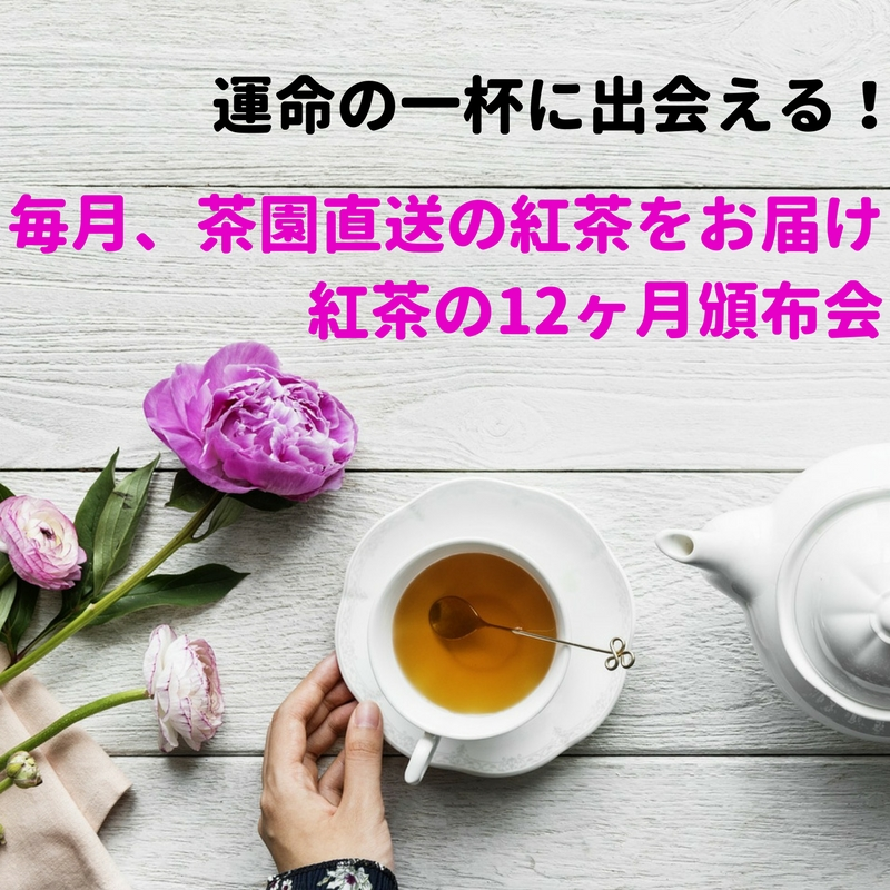 【毎月届く】紅茶の12ヶ月頒布会 (2019年度10月)