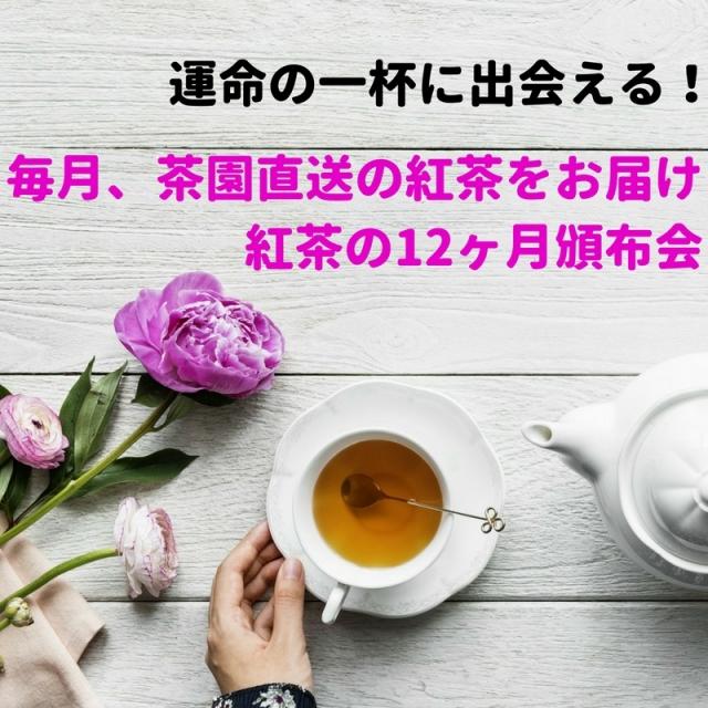 紅茶の12ヶ月頒布会 (2019年度1月) 2か月連続でニルギリ紅茶50gがプラスで届く!