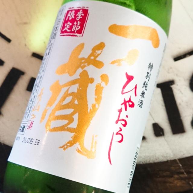 【秋酒】一ノ蔵 特別純米酒 ひやおろし