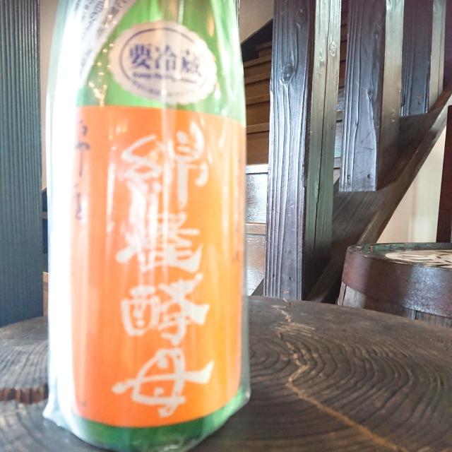 【限定】綿屋 百年酵母 特別純米酒【蔵に宿る蔵付き酵母】