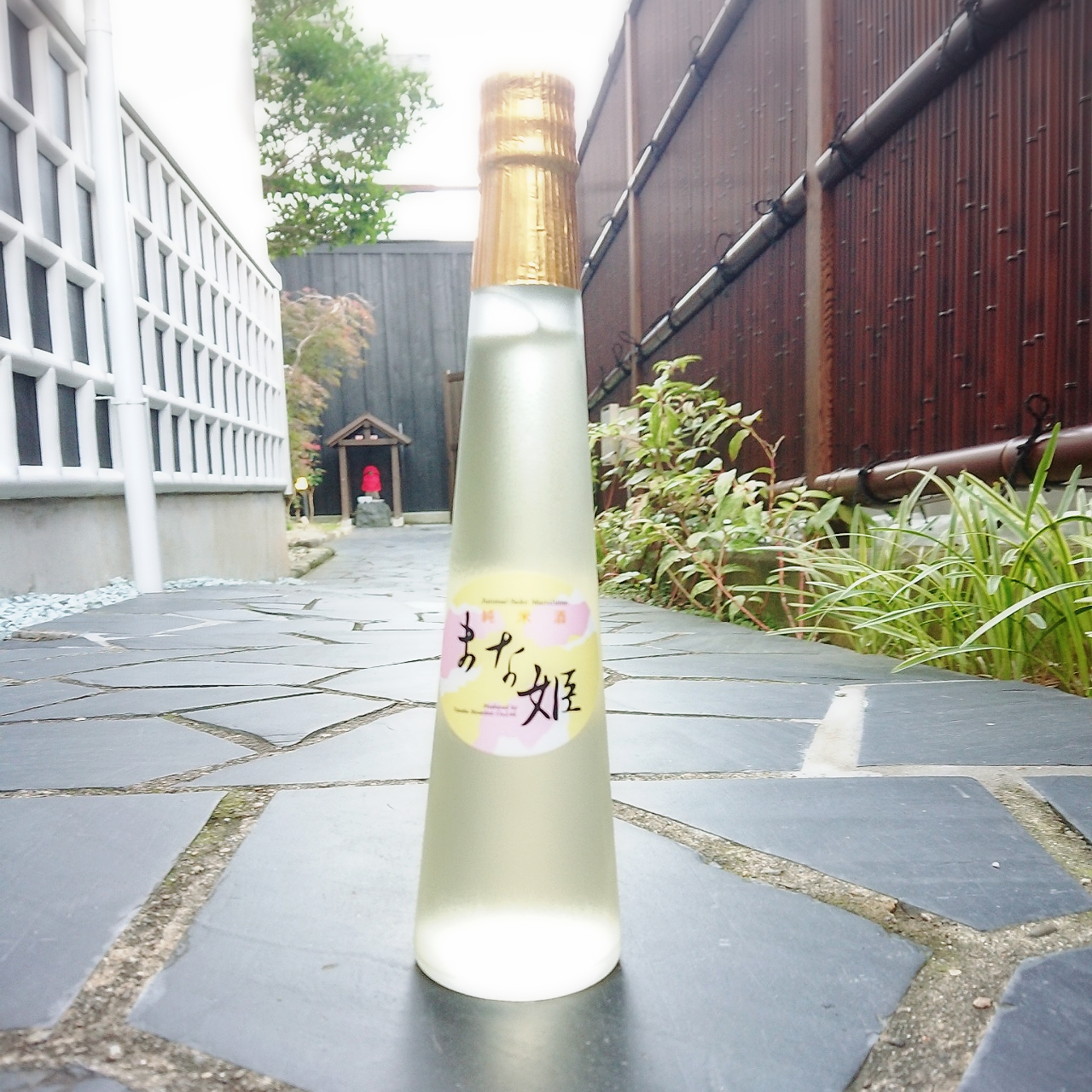 【甘口酒】真鶴 純米酒 まな姫~試飲会で大フィーバー( *´艸`)低アルコールの優しい甘さ~