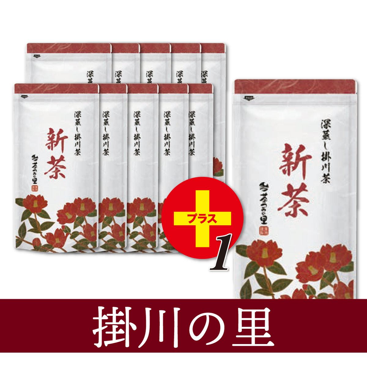 【予約商品】<新茶>掛川の里(100g袋入×11本)※10本価格で11本!<5月31日まで>