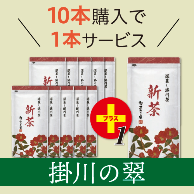 【予約商品】<新茶>掛川の翠(100g袋入×11本)※10本価格で11本!<5月31日まで>