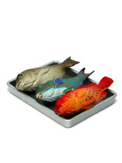 ローソン限定 海洋堂 沖縄物産展 第2弾 市場に並ぶ熱帯魚