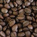 【送料無料】百年寿コーヒー 800g|003645X8