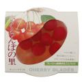 ジュポンかづの 果実の里スリーブ さくらんぼ  250g