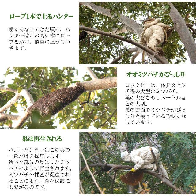 野生黒蜂蜜説明5