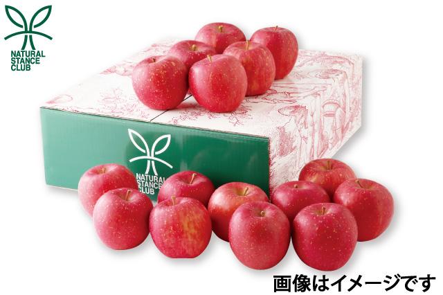 横手市 ナチュラルスタンスクラブ  佐藤さんの無袋ふじりんご