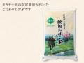 タカヤナギオリジナルぶなの里 秋田県産 おばこ米 あきたこまち