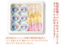 進藤冷菓 秋田名物ババヘラ・キャンデー&ソーダミルクセット