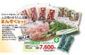 きりたんぽ鍋セットAT006