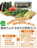 農家さんのおまかせ野菜セット