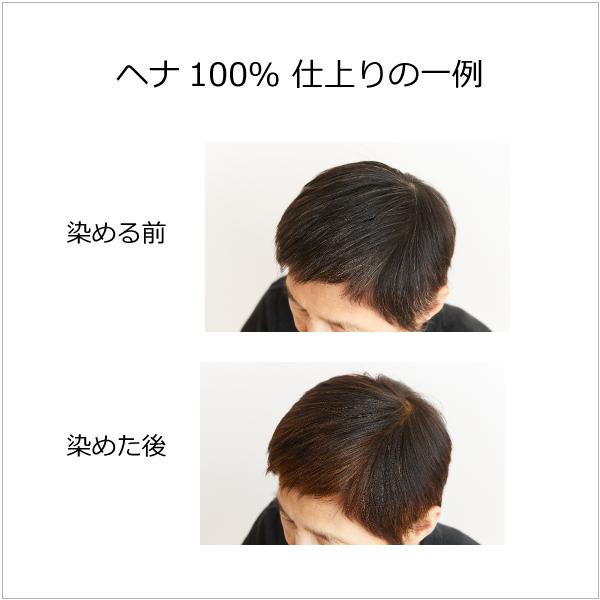 【白髪を赤茶色に染めたい方向け/天然素材100%の染毛料】ヘナ100%(赤茶色)100g [商品番号:bi2277]