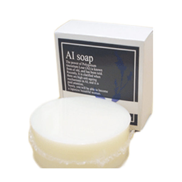 bi2579 AI soap(藍石鹸)100g【肌をうるおし整える藍エキス配合/洗顔・全身の清潔洗浄/トラブルない肌へ】