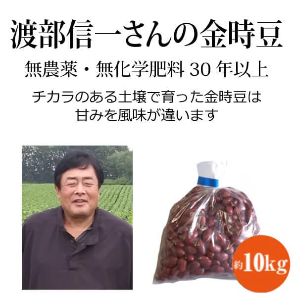 ke3683 渡部信一さんの金時豆約10kg(約1kg×10袋)【無農薬金時豆約10kg/生産者直送品/送料無料(全国発送可)/単品代引き不可】