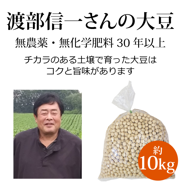 ke3685 渡部信一さんの大豆約10kg(約1kg×10袋)【無農薬大豆約10kg/生産者直送品/送料無料(全国発送可)/単品代引き不可】