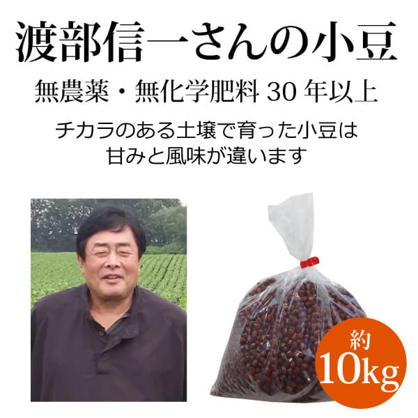 ke3686 渡部信一さんの小豆約10kg(約1kg×10袋)【無農薬小豆約10kg/生産者直送品/送料無料(全国発送可)/単品代引き不可】