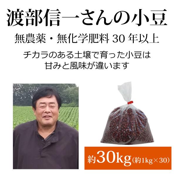 ke3818 渡部信一さんの小豆約30kg(約1kg×30袋)【無農薬小豆約(約1kg×30袋)/生産者直送品/送料無料(全国発送可)/単品代引き不可】