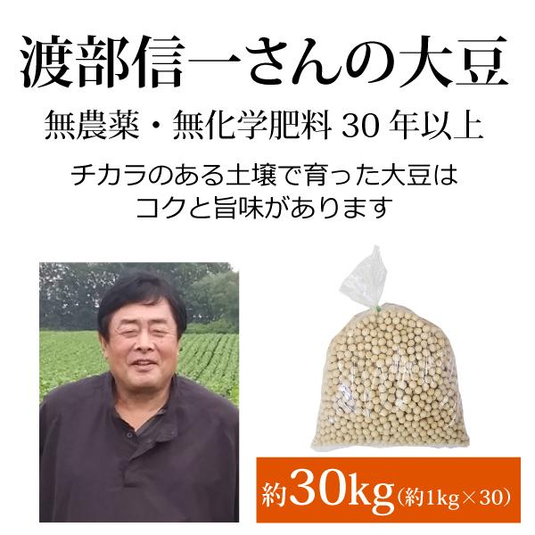 ke3913 渡部信一さんの大豆約30kg(約1kg×30袋)【無農薬大豆約30kg(約1kg×30袋)/生産者直送品/送料無料(全国発送可)/単品代引き不可】
