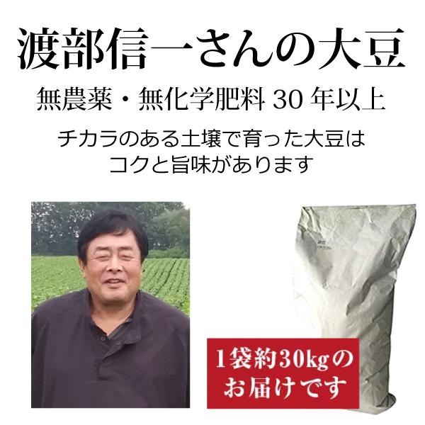 ke3918 渡部信一さんの大豆約30kg(約30kg×1袋)【無農薬大豆約30kg(1袋)/生産者直送品/送料無料(全国発送可)/単品代引き不可】