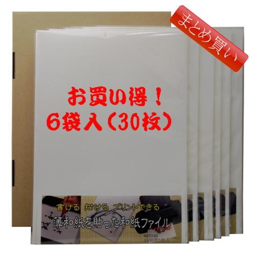 お買い得まとめ買い【送料無料】書ける描けるプリントできる薄和紙半透明ファイル 1袋A4判用5枚入り×6袋【メール便対応】(607238b)