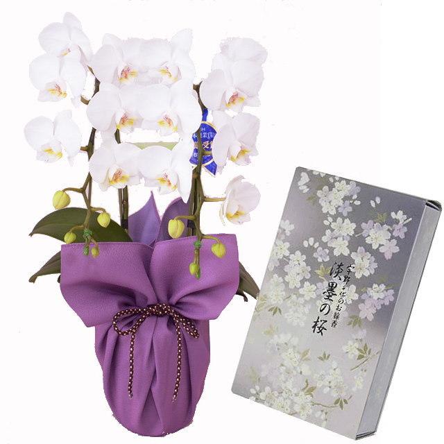 ミディ胡蝶蘭 風呂敷包み 白色 2本立ち 日本香堂のお線香 宇野千代 淡墨の桜 バラ詰 セット