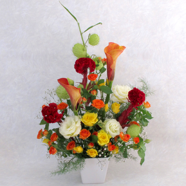 お祝い,御祝い,アレンジメント,誕生日,プレゼント,ギフト,贈り物,開店,開業,オープン,周年記念品,即日発送,送料無料,花,フラワー