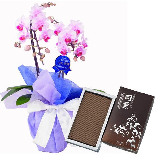 ミディ胡蝶蘭 ピンク色 2本立ち 日本香堂のお線香 司薫 しくん 沈香 バラ詰 #23902 セット