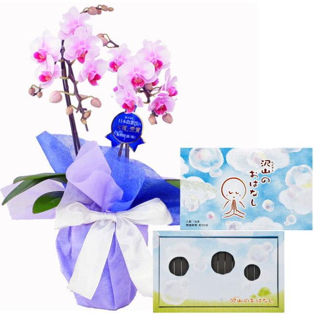 ミディ胡蝶蘭 ピンク色 2本立ち 丸叶むらたのお線香 沢山のおはなし 16本入 文字の浮き出るお香 #O-01 セット