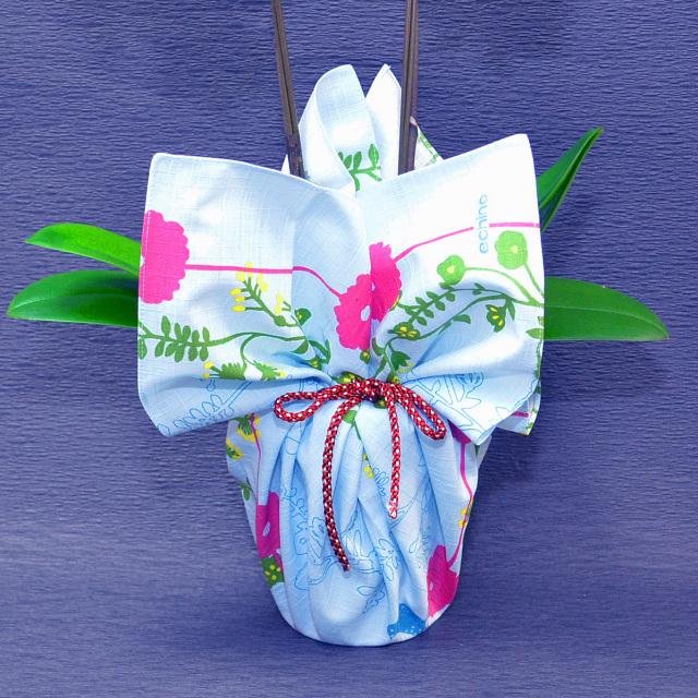 風呂敷 包み 胡蝶蘭 赤リップ 誕生日 お祝い 開店祝い