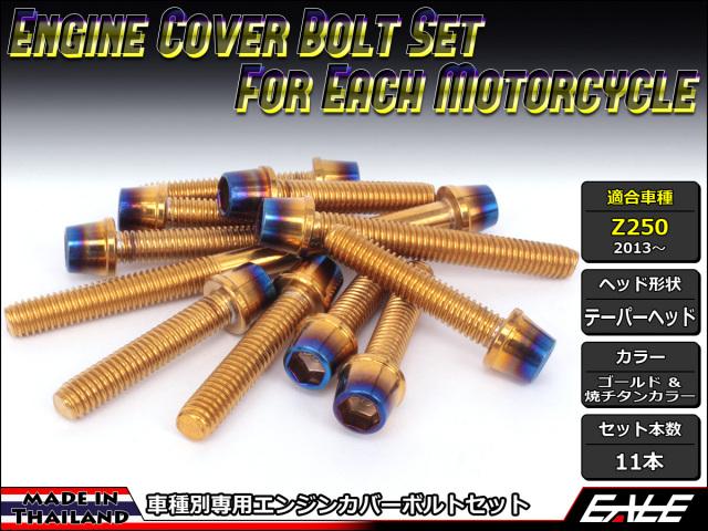 Z250(ER250) エンジンカバー ボルト11本set キャップボルト CTCテーパーヘッド ゴールド&焼チタンカラー TB8058