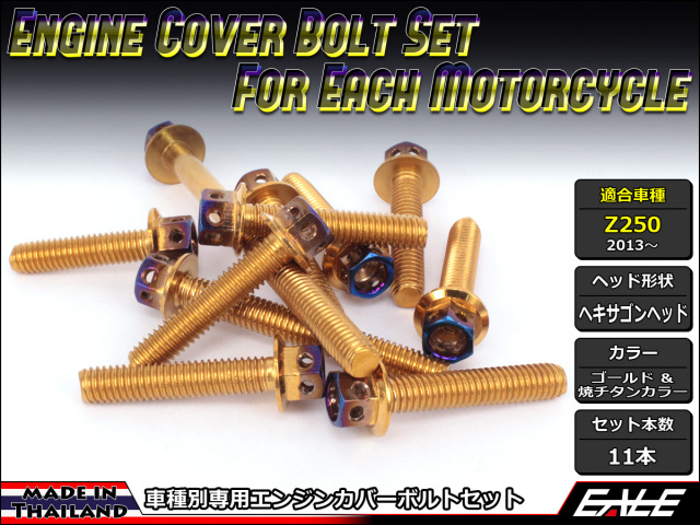 Z250(ER250) エンジンカバー ボルト11本set フランジ付六角ボルト CTCヘキサゴンヘッド ゴールド&焼チタンカラー TB8060