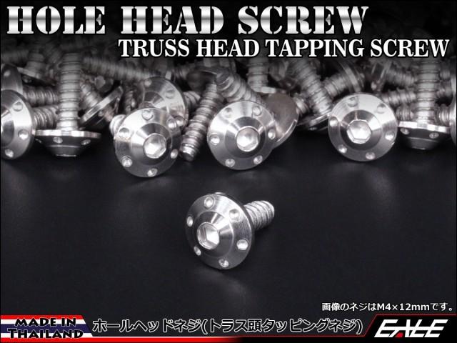 M5×20mm ホールヘッドネジ H-1 タッピングネジ ステンレス 削り出し トラス頭 シルバー TC0109