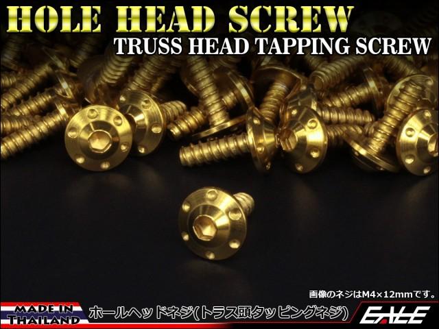 M5×20mm ホールヘッドネジ H-1 タッピングネジ ステンレス 削り出し トラス頭 ゴールド TC0114