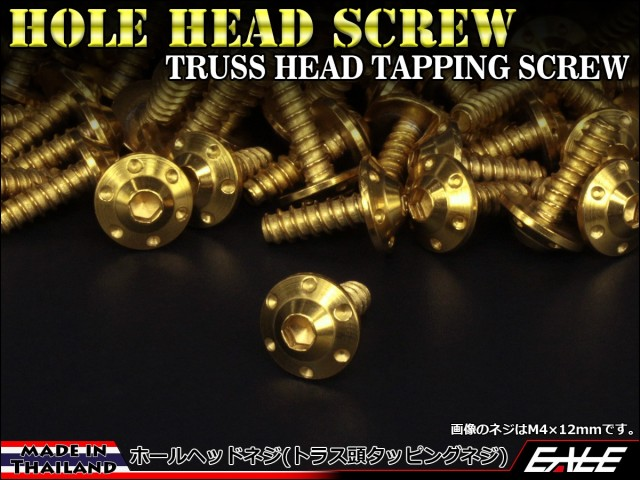 M5×25mm ホールヘッドネジ H-1 タッピングネジ ステンレス 削り出し トラス頭 ゴールド TC0115