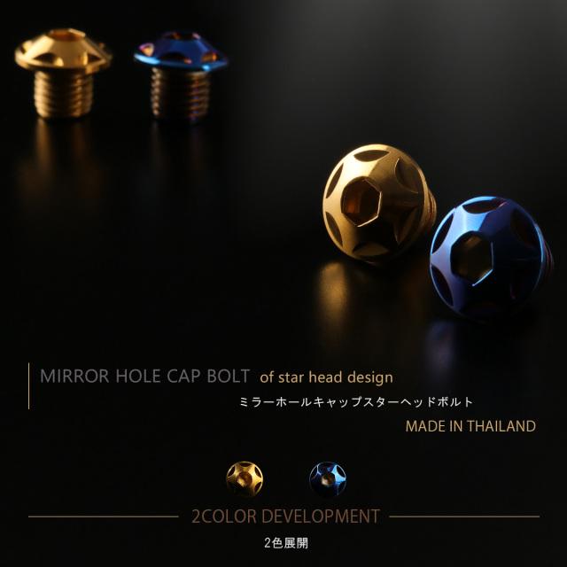 ミラーホールカバー キャップ スターヘッド ボルト 2個セット M10×10mm 正ネジ ピッチ 1.25 SUS304 ステンレス製 TH0102-0103