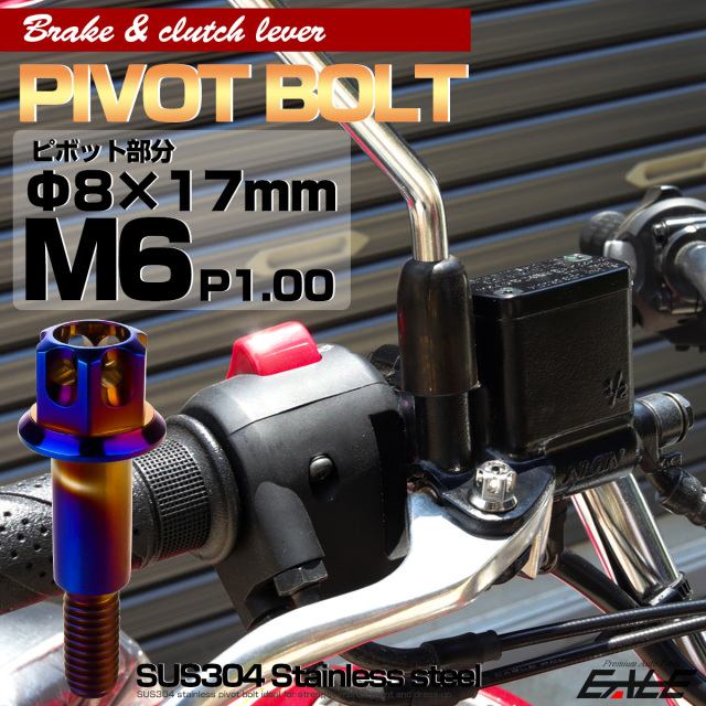 ブレーキレバー クラッチレバー 取付用 ピボットボルト Φ7×16mm M6×14mm P=1.00 焼きチタン A3ヘッド SUSステンレス TH0540