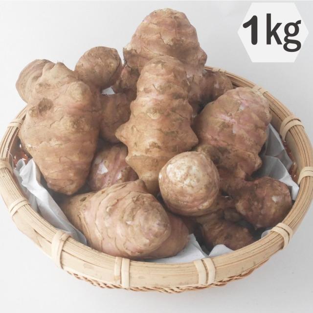 綿部農園栽培の菊芋(紫)1kg 栃木の有機栽培農園が作る自慢の菊芋