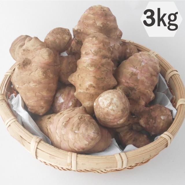 綿部農園栽培の菊芋(紫)3kg 栃木の有機栽培農園が作る自慢の菊芋